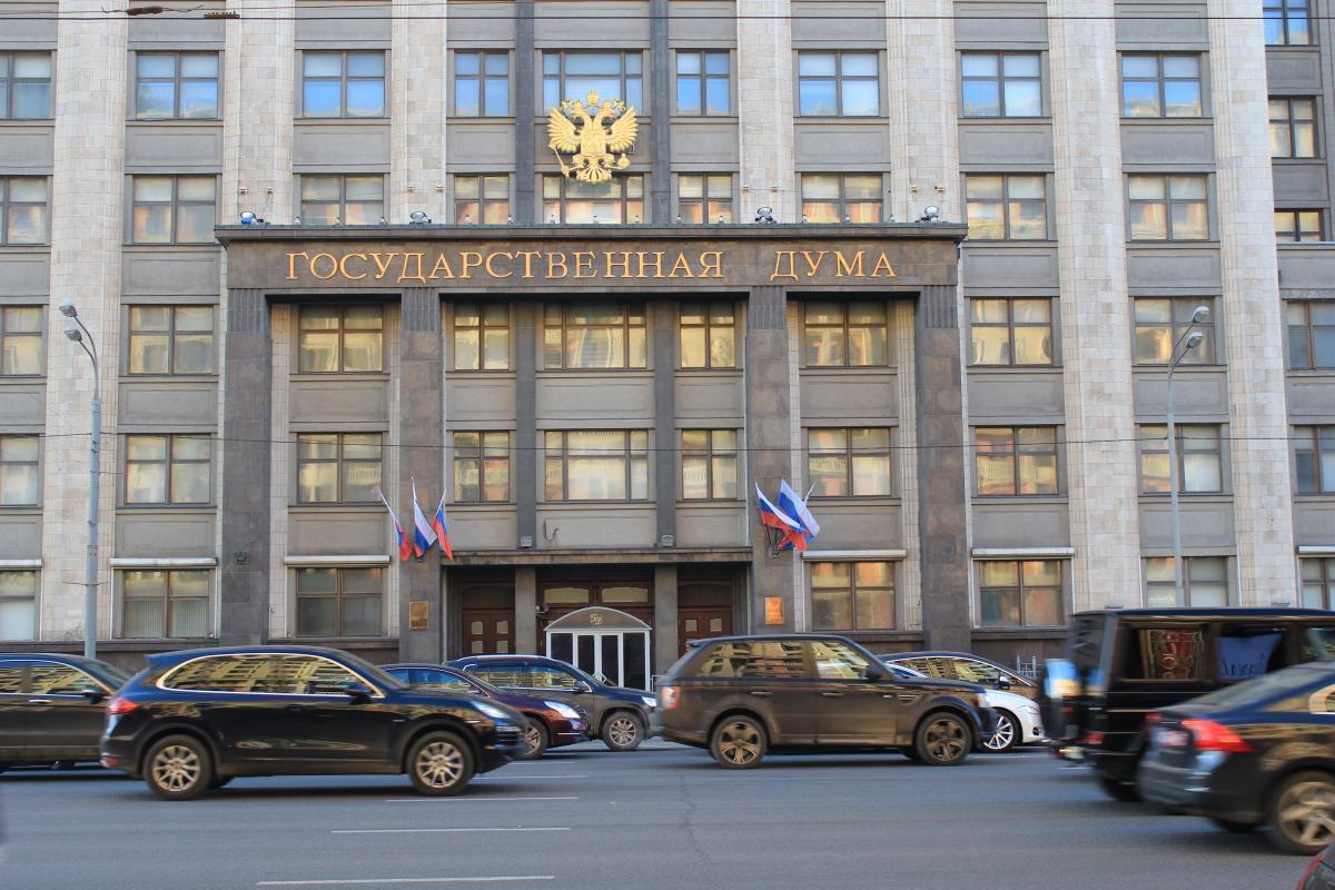 Госдума одобрила закон о критике власти