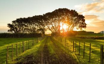 IoT в сельском хозяйстве: приложение MyOperations